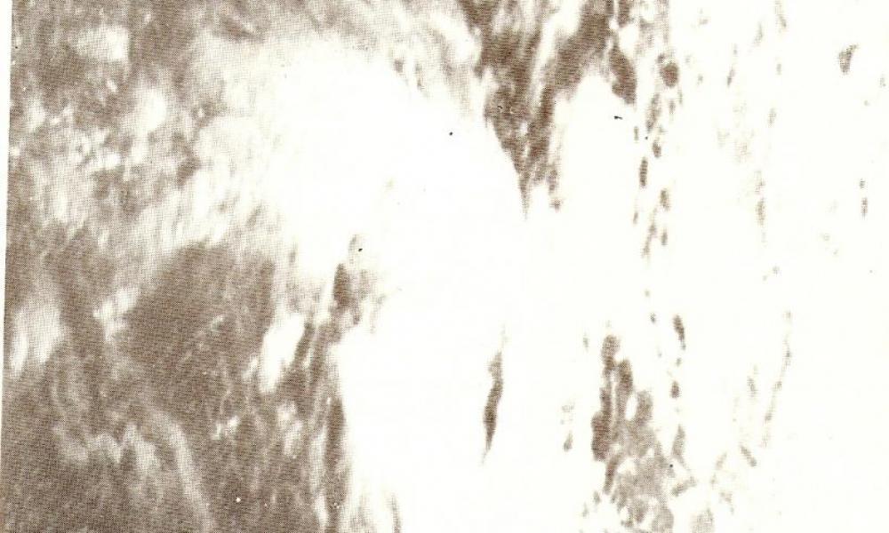 FLORE 8 AU 9 JAN 1980