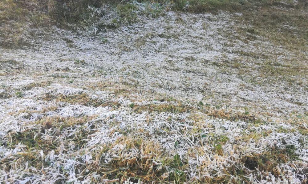 gelées blanches la Réunion