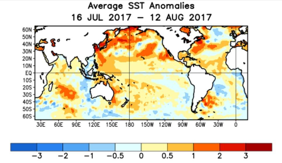Anomalie SST du 16 07 2017 au 12 08 2017 (NOAA)