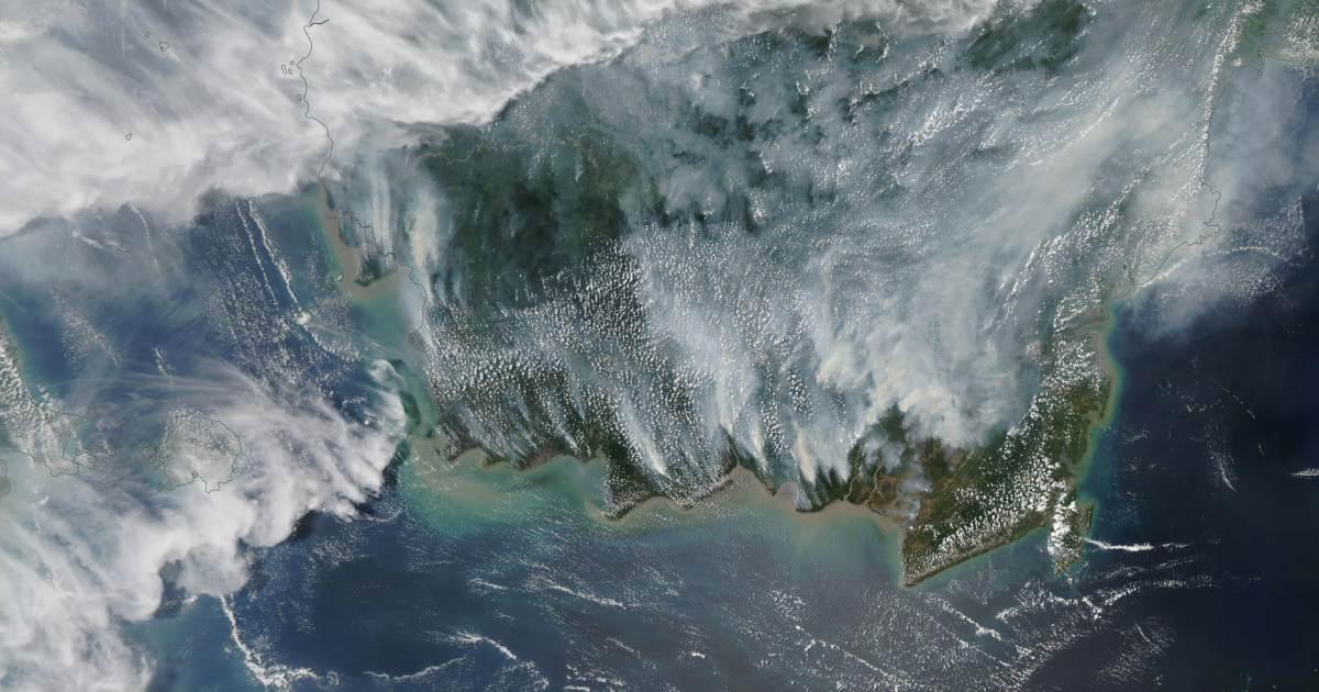 Borneo smog incendie