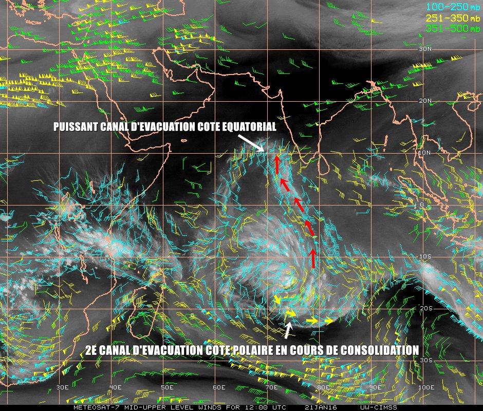 Carte CIMSS des vents en haute altitude du 21/01/16 à 12UTC