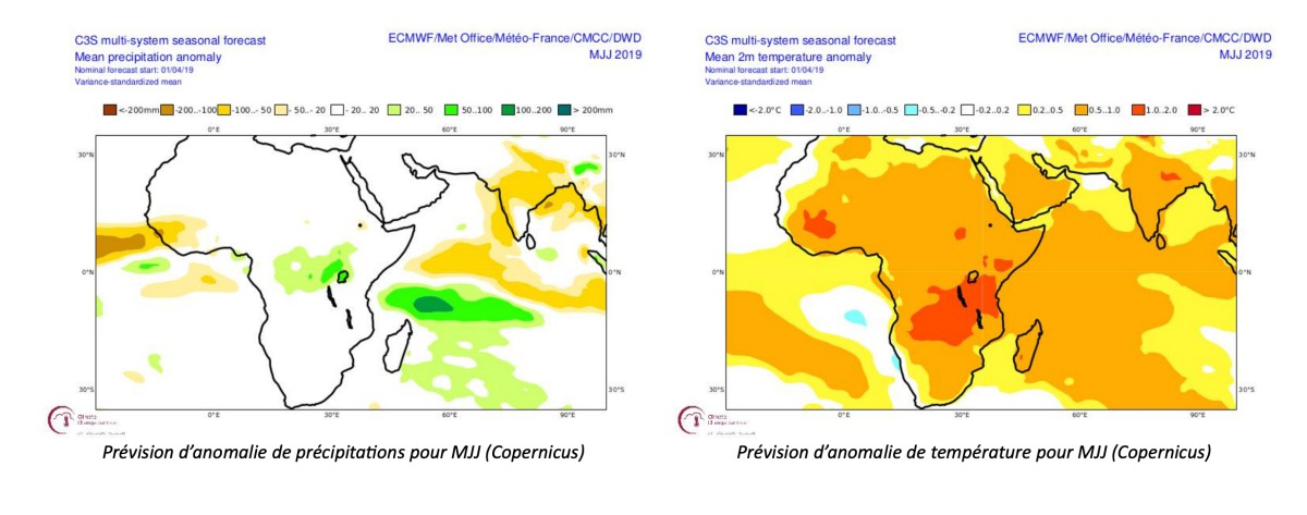 prévision Copernicus ocean indien