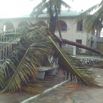 Cyclone enawo antalaha