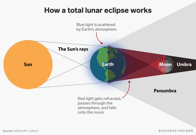 Principe de l'éclipse lunaire ©businessinsider.fr