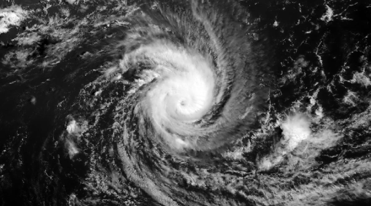 Habana cyclone midget