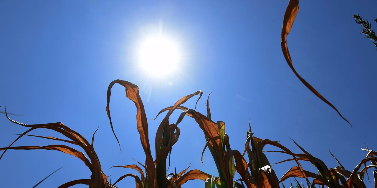 mois de mars le plus chaud depuis 50 ans  u00e0 la r u00e9union
