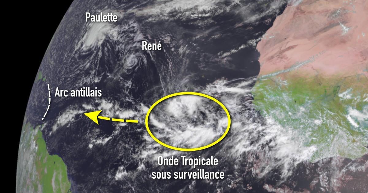 Onde tropicale sous surveillance