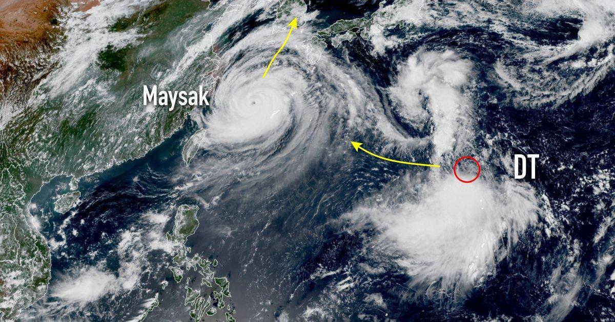 Typhon maysak futur typhon haishen