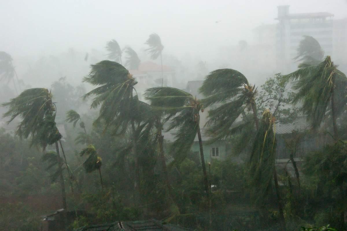 Vivre un cyclone temoignage recit histoire