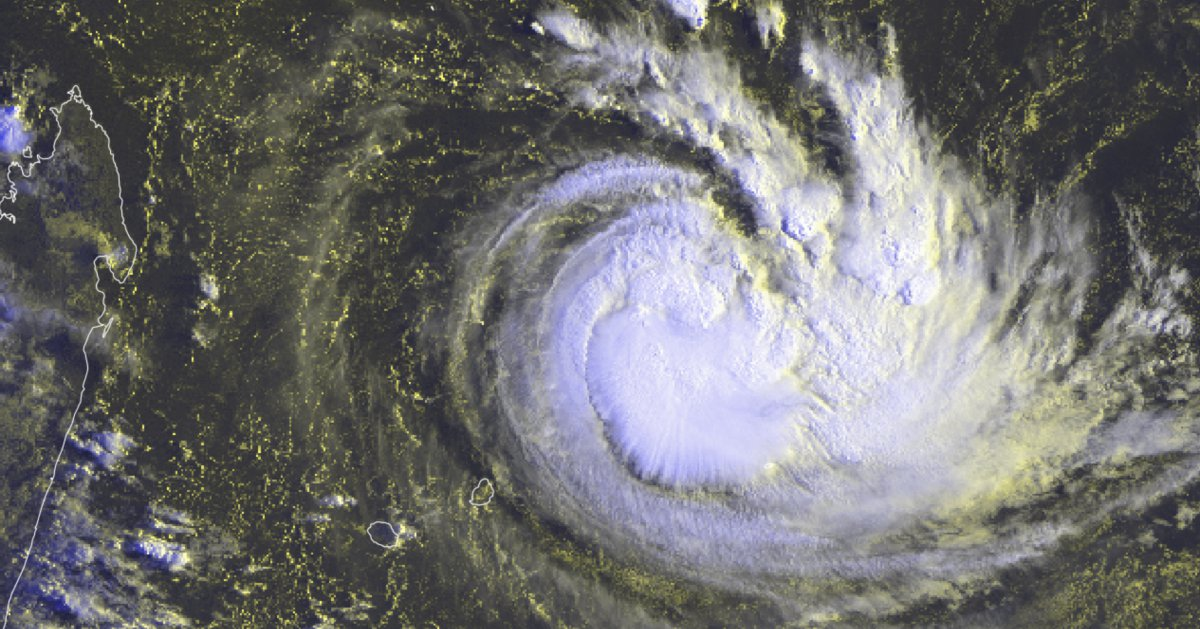 Cyclone joaninha
