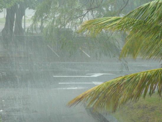 pluie-30-janvier-2011-015.jpg