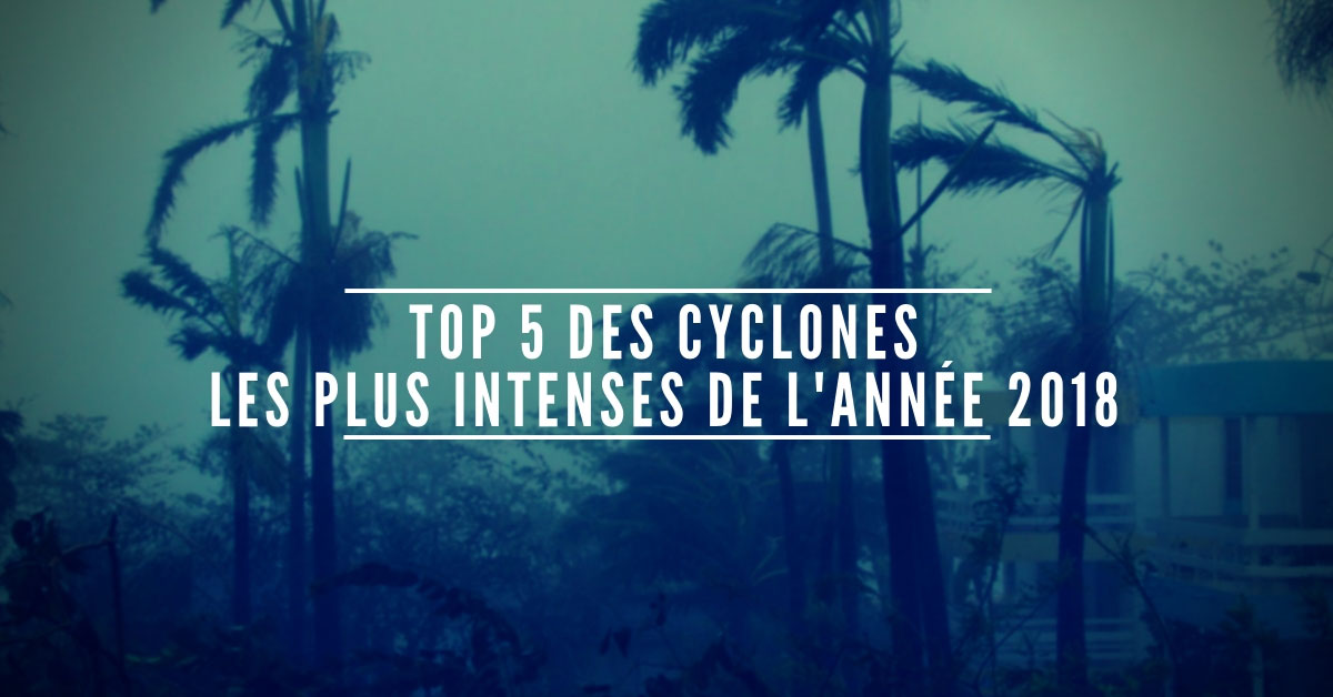 Top 5 des cyclonesles plus intenses de l annee
